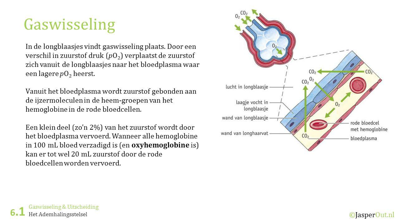 Gaswisseling & Uitscheiding 6.1 ©JasperOut.nl Het Ademhalingsstelsel Gaswisseling In de haarvaten in de organen is het druk verschil omgekeerd; een hogere pO 2 in het bloed ten opzichte van de pO 2 in het weefselvloeistof.