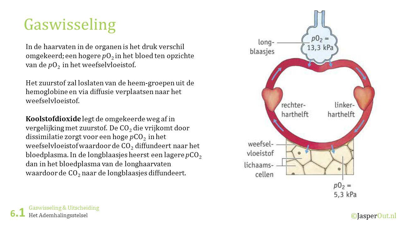 Gaswisseling & Uitscheiding 6.1 ©JasperOut.nl Het Ademhalingsstelsel Gaswisseling In de haarvaten in de organen is het druk verschil omgekeerd; een ho