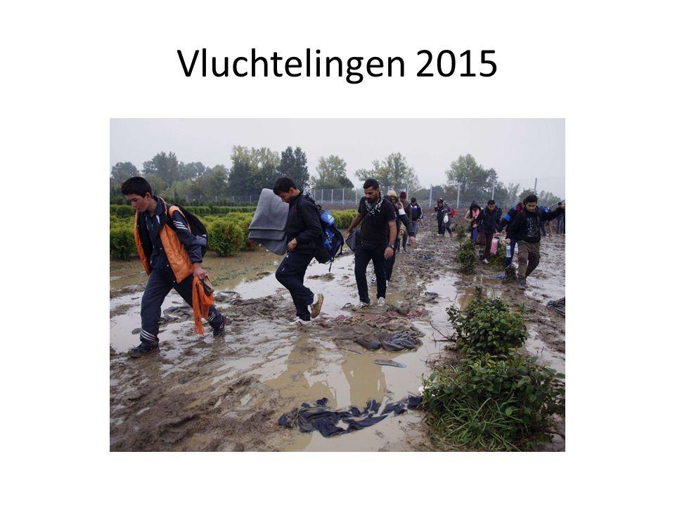 Vluchtelingen 2015