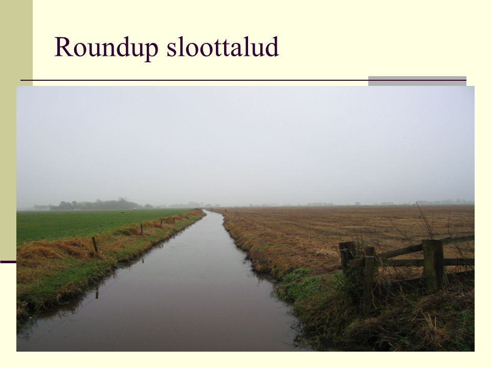 Roundup sloottalud