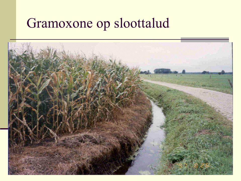 Gramoxone op sloottalud