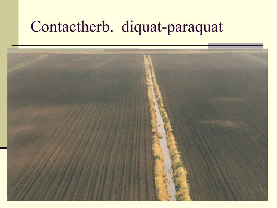Contactherb. diquat-paraquat