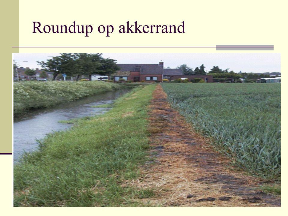 Roundup op akkerrand