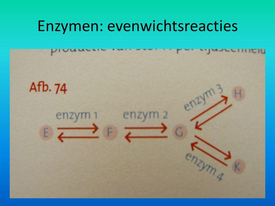 Enzymen: evenwichtsreacties 13