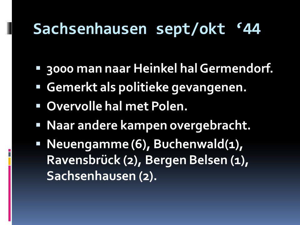 Sachsenhausen sept/okt '44  3000 man naar Heinkel hal Germendorf.  Gemerkt als politieke gevangenen.  Overvolle hal met Polen.  Naar andere kampen