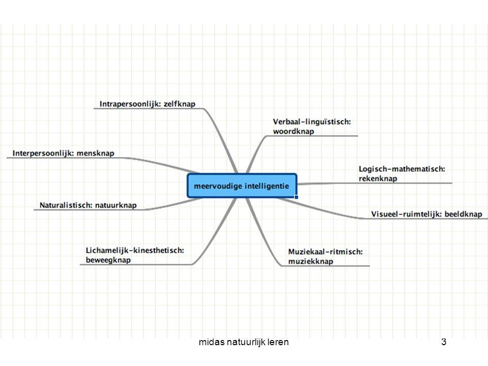 midas natuurlijk leren24 Mindmappen Online Nodig een collega uit(email) om samen aan die map te werken, onafhankelijk van tijd en plaats