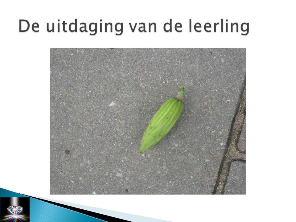 Bronnen, theoretische onderbouwing http://www.onderwijsmaakjesamen.nl/ magento/e-zine-creatief-denken.html