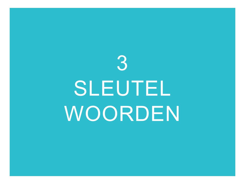 3 SLEUTEL WOORDEN