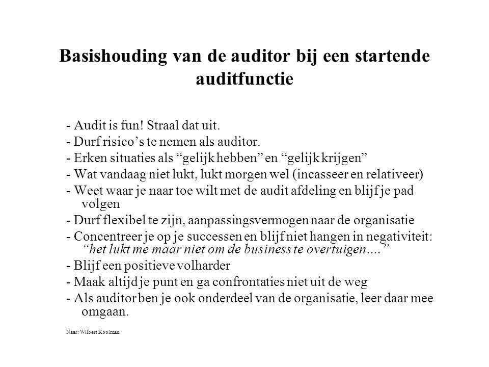 Basishouding van de auditor bij een startende auditfunctie - Audit is fun.