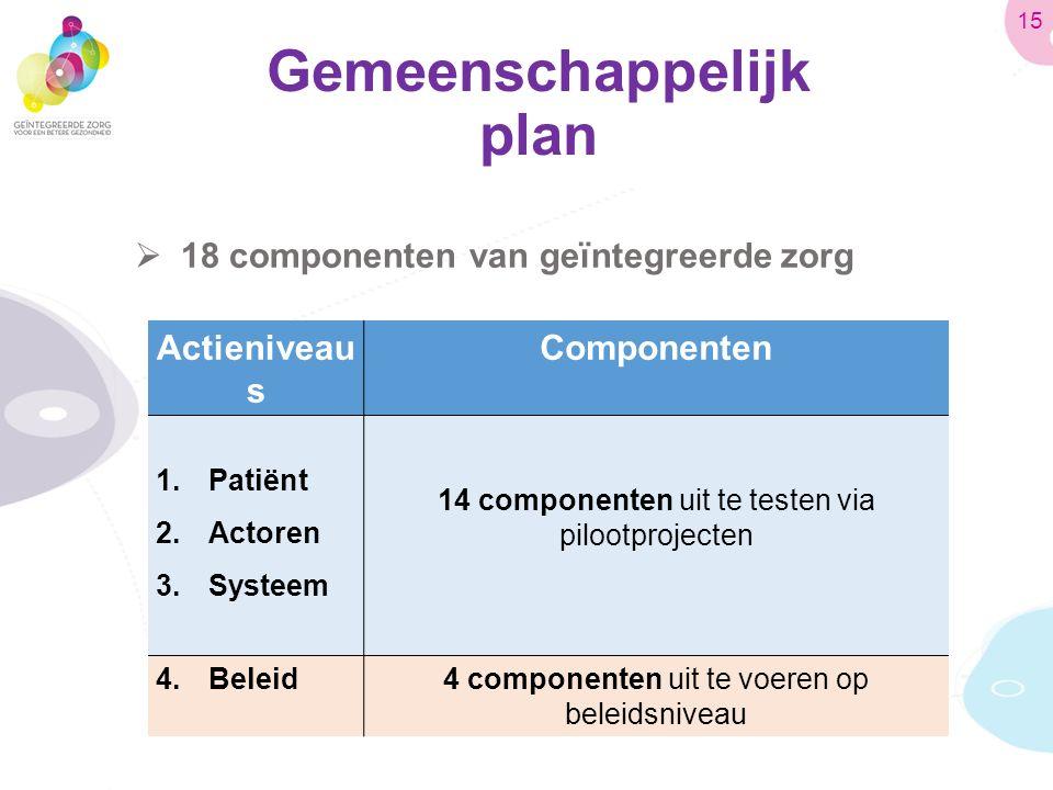 Gemeenschappelijk plan  18 componenten van geïntegreerde zorg Actieniveau s Componenten 1.Patiënt 2.Actoren 3.Systeem 14 componenten uit te testen via pilootprojecten 4.Beleid4 componenten uit te voeren op beleidsniveau 15