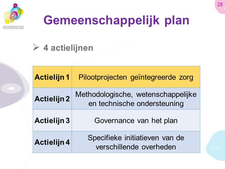 Gemeenschappelijk plan  4 actielijnen Actielijn 1Pilootprojecten geïntegreerde zorg Actielijn 2 Methodologische, wetenschappelijke en technische ondersteuning Actielijn 3Governance van het plan Actielijn 4 Specifieke initiatieven van de verschillende overheden 28