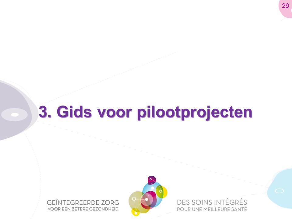3. Gids voor pilootprojecten 29