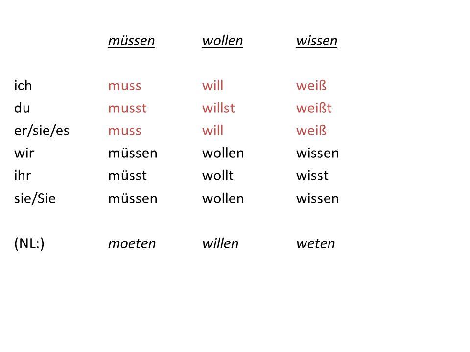 OEFENINGEN: Bezittelijk Voornaamwoord Schrijf op in het Duits: 1.