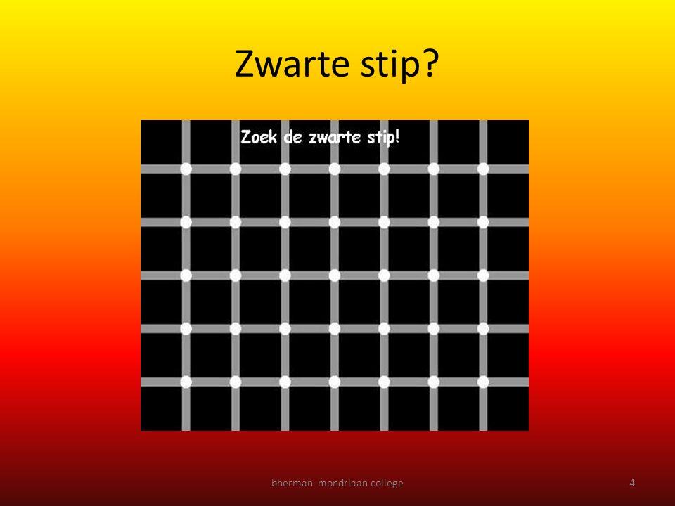 bherman mondriaan college4 Zwarte stip?
