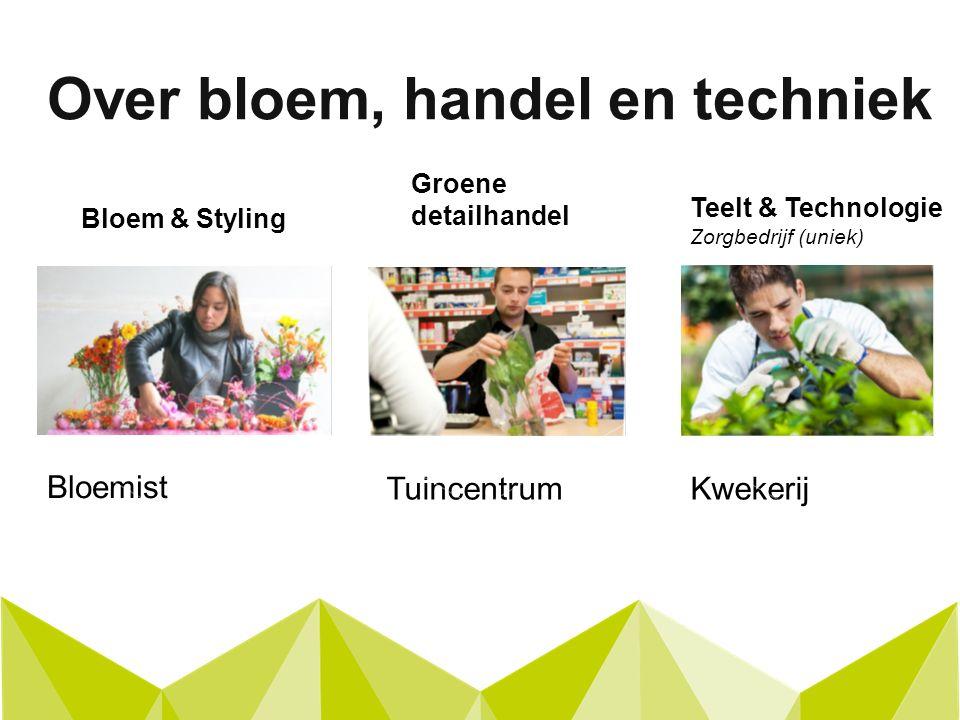 Bloem & Styling Over bloem, handel en techniek Groene detailhandel Teelt & Technologie Zorgbedrijf (uniek) Bloemist TuincentrumKwekerij