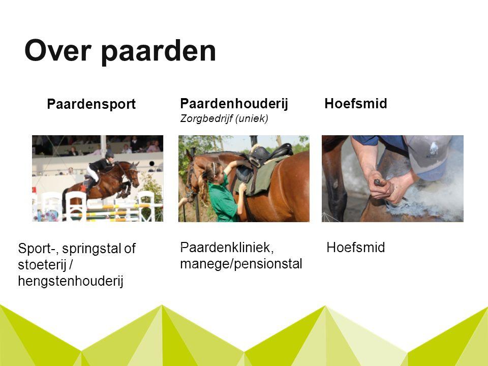 Paardensport Over paarden Paardenhouderij Zorgbedrijf (uniek) Paardenkliniek, manege/pensionstal Sport-, springstal of stoeterij / hengstenhouderij Hoefsmid