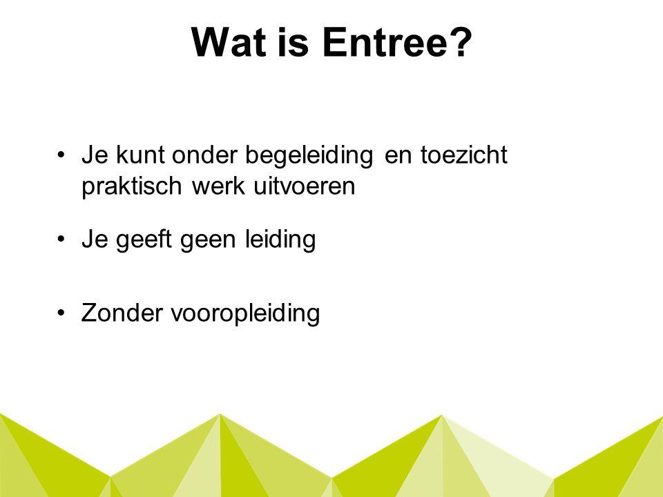 Wat is Entree.