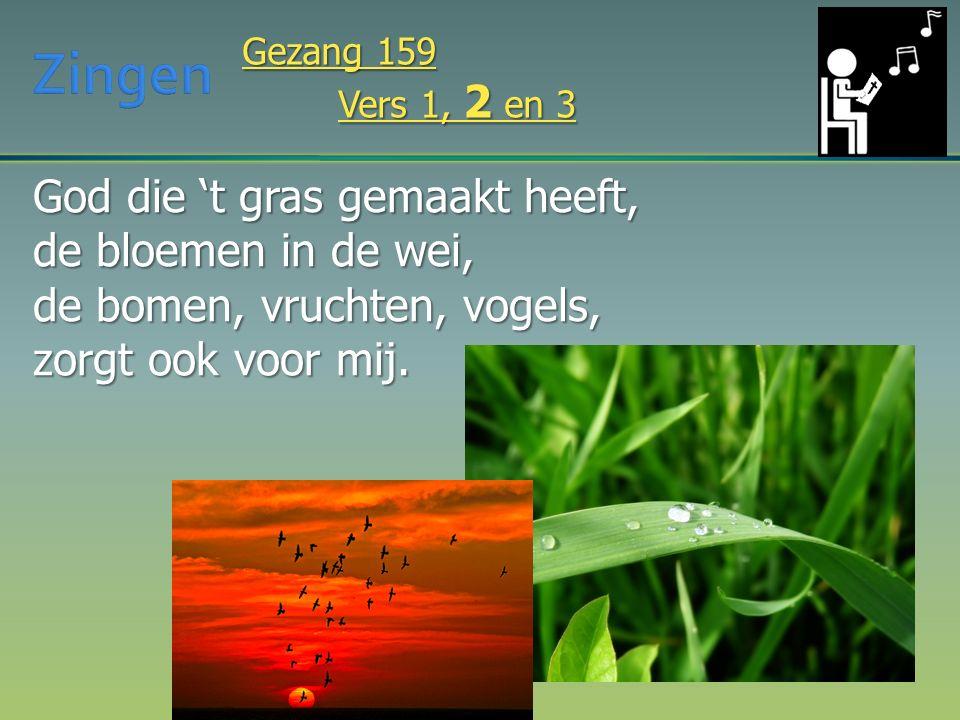 God die 't gras gemaakt heeft, de bloemen in de wei, de bomen, vruchten, vogels, zorgt ook voor mij. Gezang 159 Vers 1, 2 en 3