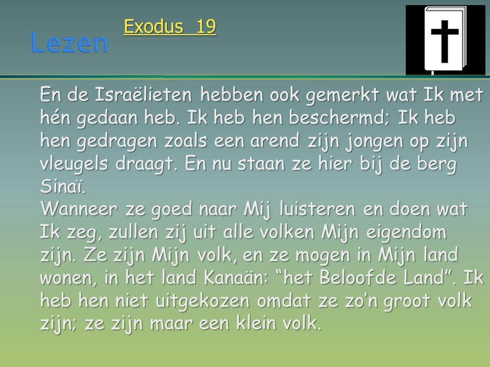 Exodus 19 En de Israëlieten hebben ook gemerkt wat Ik met hén gedaan heb. Ik heb hen beschermd; Ik heb hen gedragen zoals een arend zijn jongen op zij
