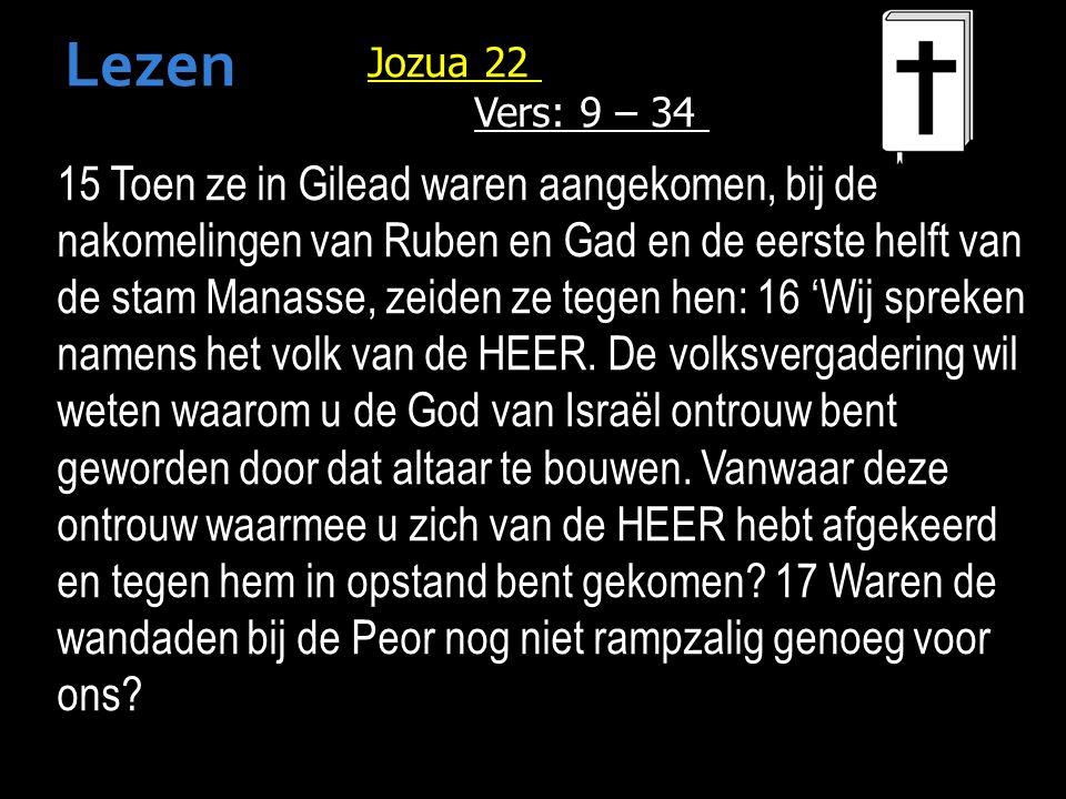 15 Toen ze in Gilead waren aangekomen, bij de nakomelingen van Ruben en Gad en de eerste helft van de stam Manasse, zeiden ze tegen hen: 16 'Wij spreken namens het volk van de HEER.