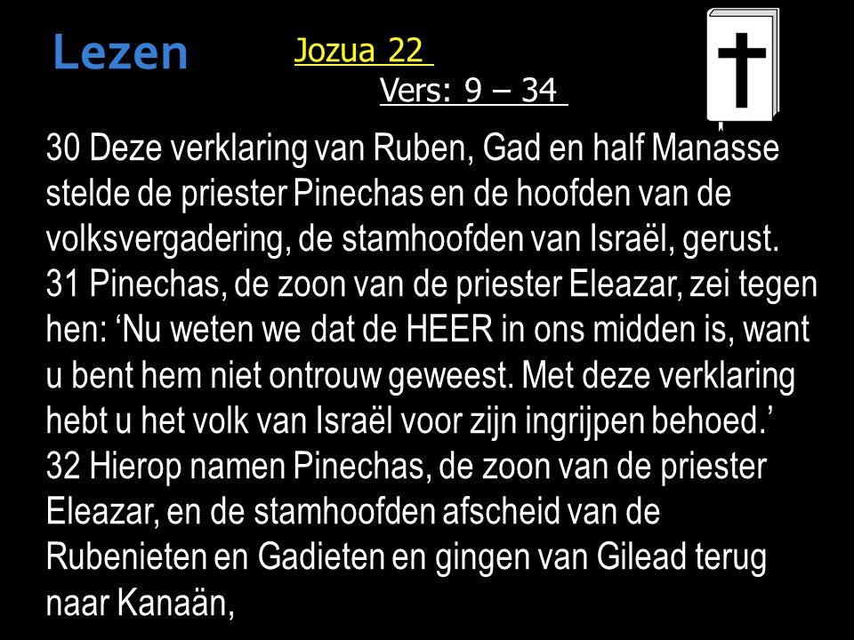 30 Deze verklaring van Ruben, Gad en half Manasse stelde de priester Pinechas en de hoofden van de volksvergadering, de stamhoofden van Israël, gerust.