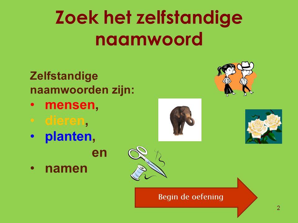Zoek het zelfstandige naamwoord 2 Zelfstandige naamwoorden zijn: mensen, dieren, planten, dingen en namen Begin de oefening