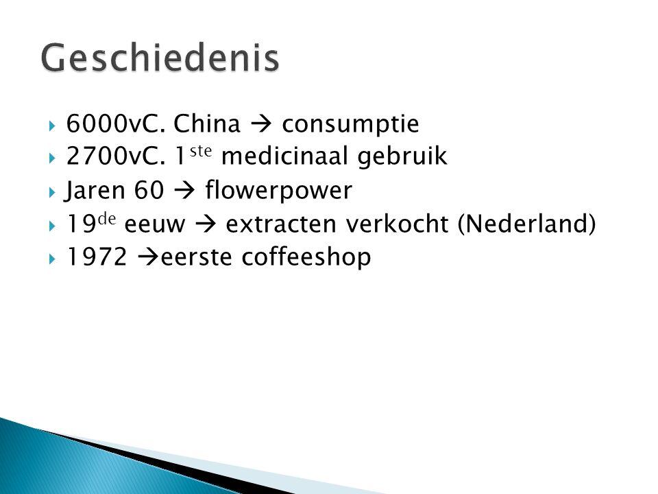  6000vC. China  consumptie  2700vC.