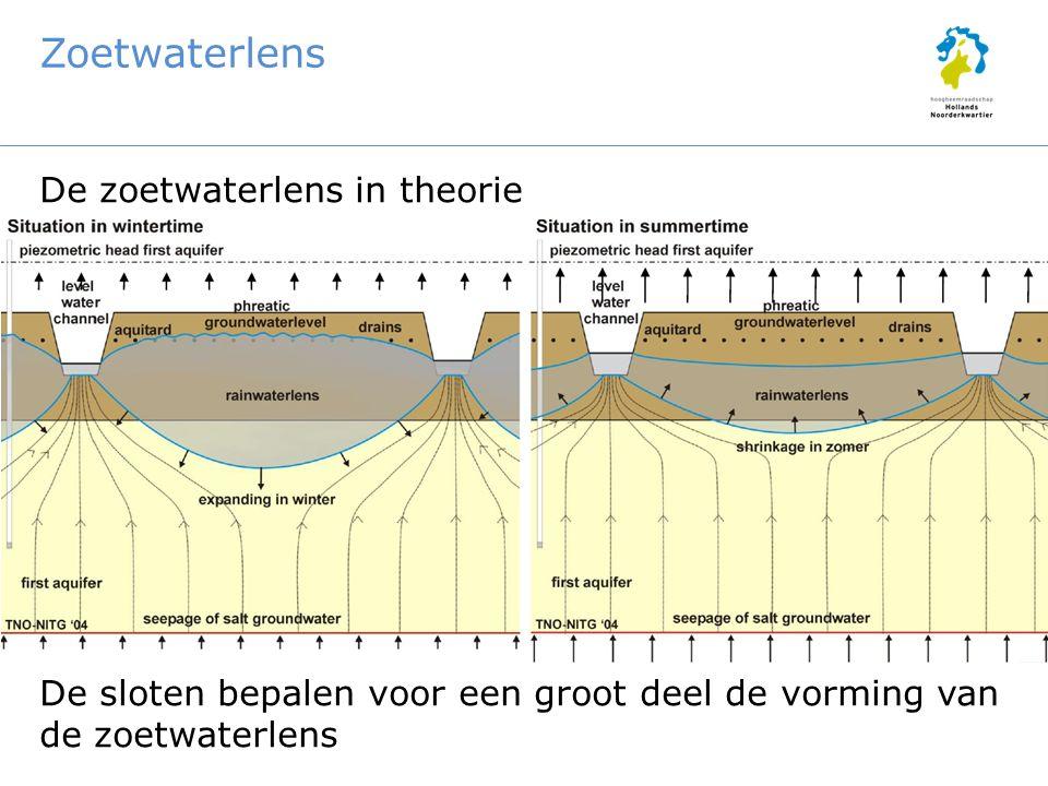 Zoetwaterlens De zoetwaterlens in theorie De sloten bepalen voor een groot deel de vorming van de zoetwaterlens
