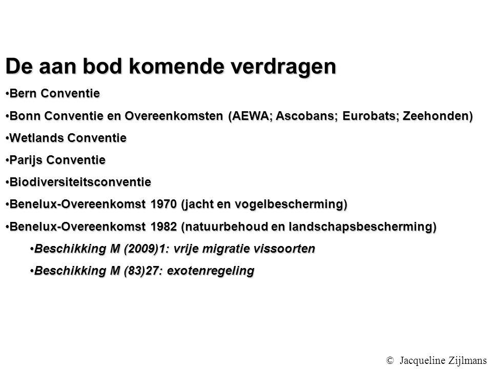De aan bod komende verdragen Bern ConventieBern Conventie Bonn Conventie en Overeenkomsten (AEWA; Ascobans; Eurobats; Zeehonden)Bonn Conventie en Overeenkomsten (AEWA; Ascobans; Eurobats; Zeehonden) Wetlands ConventieWetlands Conventie Parijs ConventieParijs Conventie BiodiversiteitsconventieBiodiversiteitsconventie Benelux-Overeenkomst 1970 (jacht en vogelbescherming)Benelux-Overeenkomst 1970 (jacht en vogelbescherming) Benelux-Overeenkomst 1982 (natuurbehoud en landschapsbescherming)Benelux-Overeenkomst 1982 (natuurbehoud en landschapsbescherming) Beschikking M (2009)1: vrije migratie vissoortenBeschikking M (2009)1: vrije migratie vissoorten Beschikking M (83)27: exotenregelingBeschikking M (83)27: exotenregeling © Jacqueline Zijlmans
