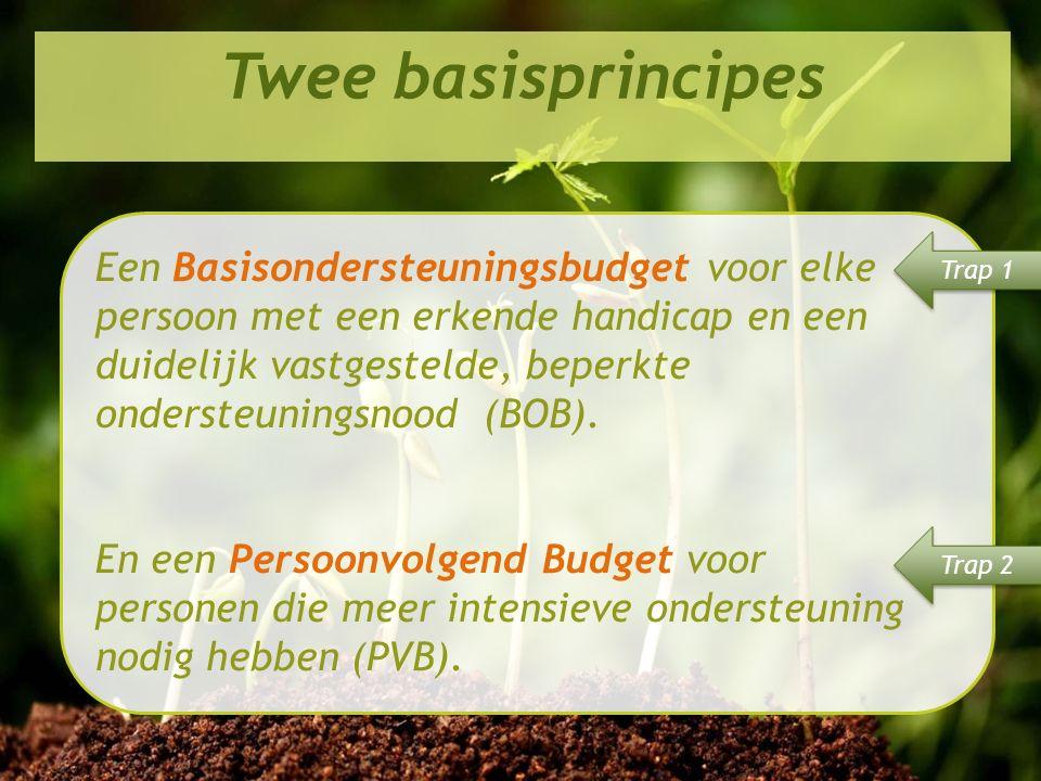 Perspectief 2020 in de praktijk Twee basisprincipes Een Basisondersteuningsbudget voor elke persoon met een erkende handicap en een duidelijk vastgestelde, beperkte ondersteuningsnood (BOB).