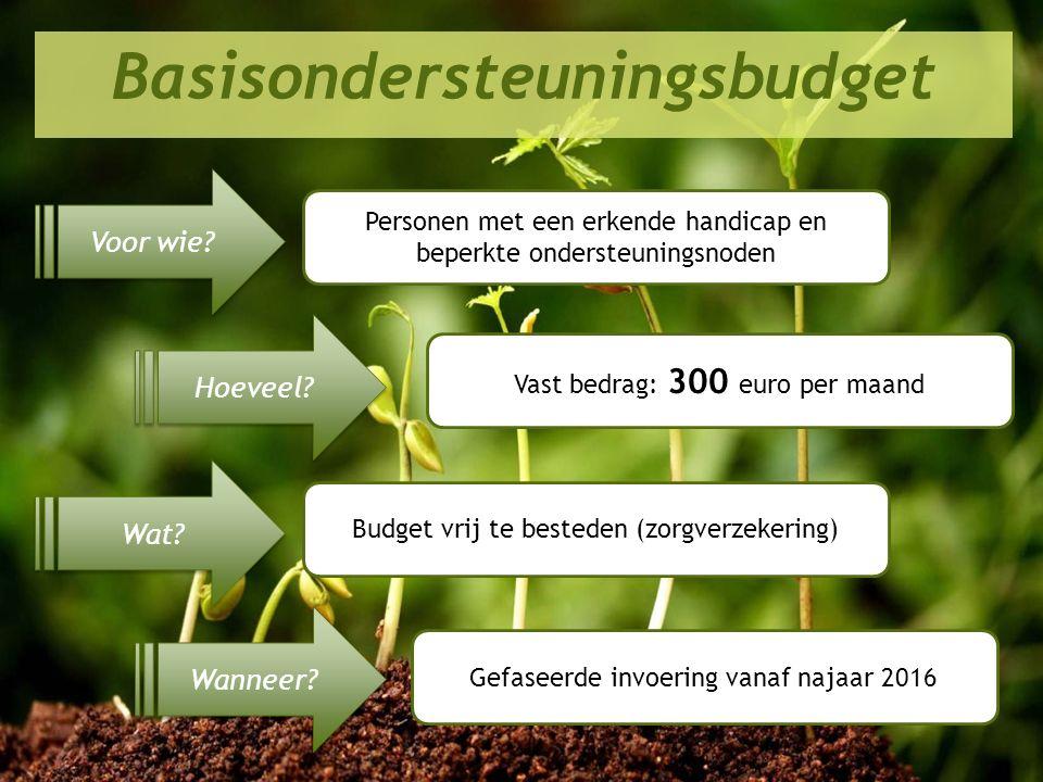 Perspectief 2020 in de praktijk Basisondersteuningsbudget Voor wie? Hoeveel? Wat? Wanneer? Personen met een erkende handicap en beperkte ondersteuning