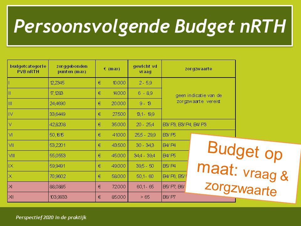 Perspectief 2020 in de praktijk Persoonsvolgende Budget nRTH Budget op maat: vraag & zorgzwaarte