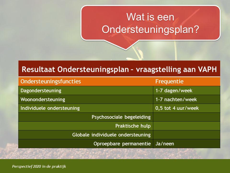 Perspectief 2020 in de praktijk Resultaat Ondersteuningsplan – vraagstelling aan VAPH OndersteuningsfunctiesFrequentie Dagondersteuning1-7 dagen/week
