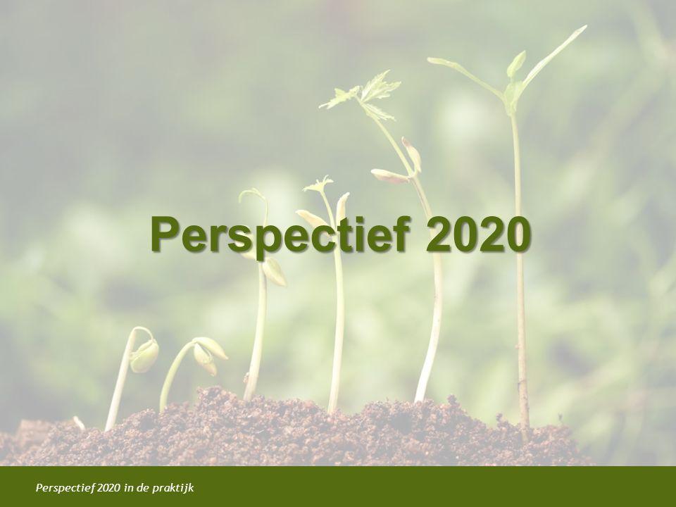 Perspectief 2020 in de praktijk Perspectief 2020