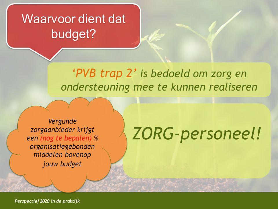Perspectief 2020 in de praktijk Waarvoor dient dat budget? 'PVB trap 2' is bedoeld om zorg en ondersteuning mee te kunnen realiseren ZORG-personeel! V