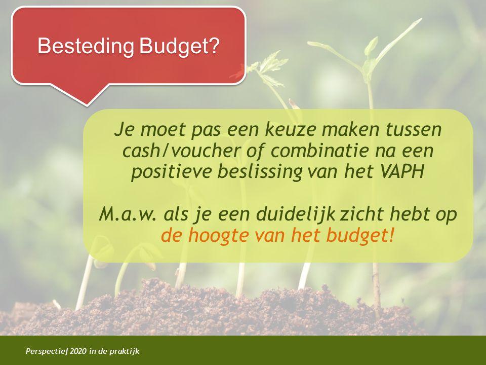 Perspectief 2020 in de praktijk Besteding Budget? Je moet pas een keuze maken tussen cash/voucher of combinatie na een positieve beslissing van het VA