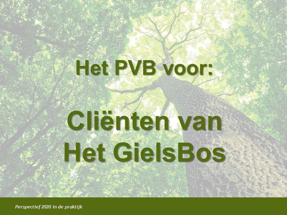 Perspectief 2020 in de praktijk Het PVB voor: Cliënten van Het GielsBos