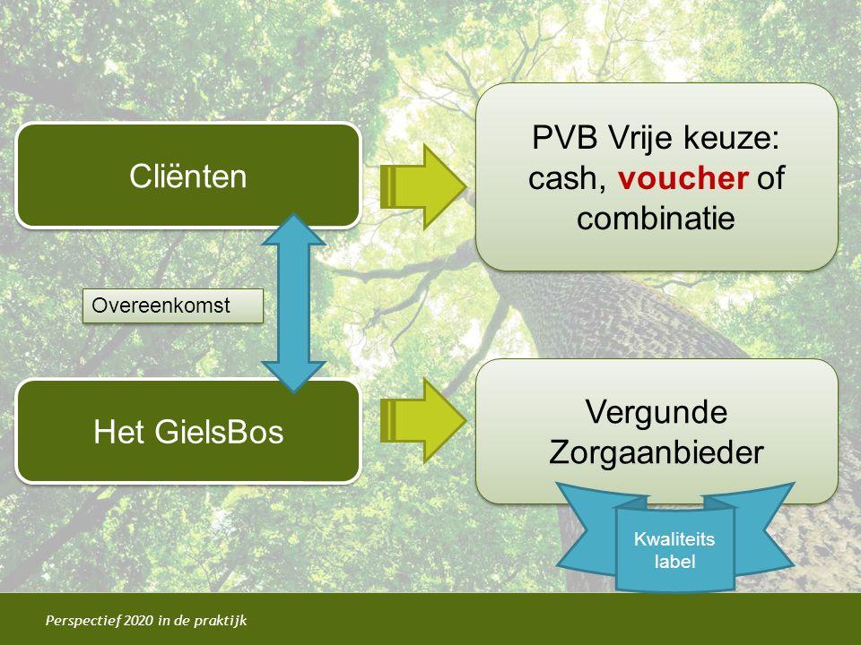 Perspectief 2020 in de praktijk Cliënten PVB Vrije keuze: cash, voucher of combinatie Vergunde Zorgaanbieder Vergunde Zorgaanbieder Het GielsBos Overeenkomst Kwaliteits label