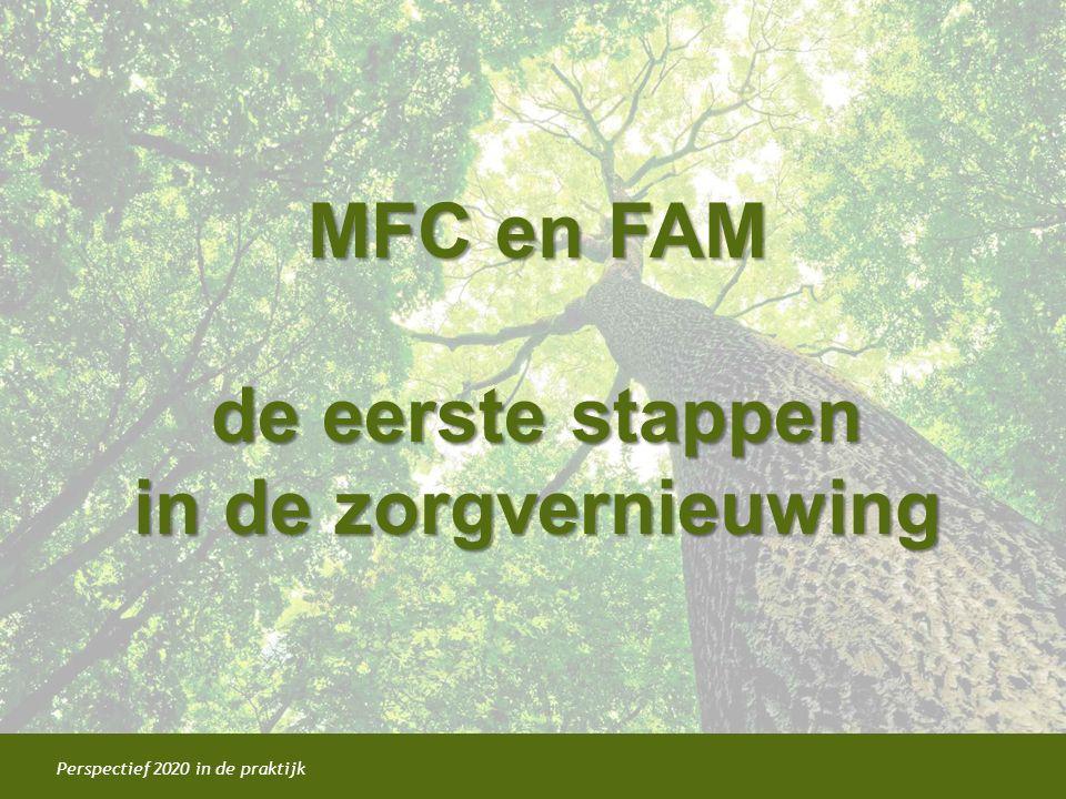 Perspectief 2020 in de praktijk MFC en FAM de eerste stappen in de zorgvernieuwing MFC en FAM de eerste stappen in de zorgvernieuwing