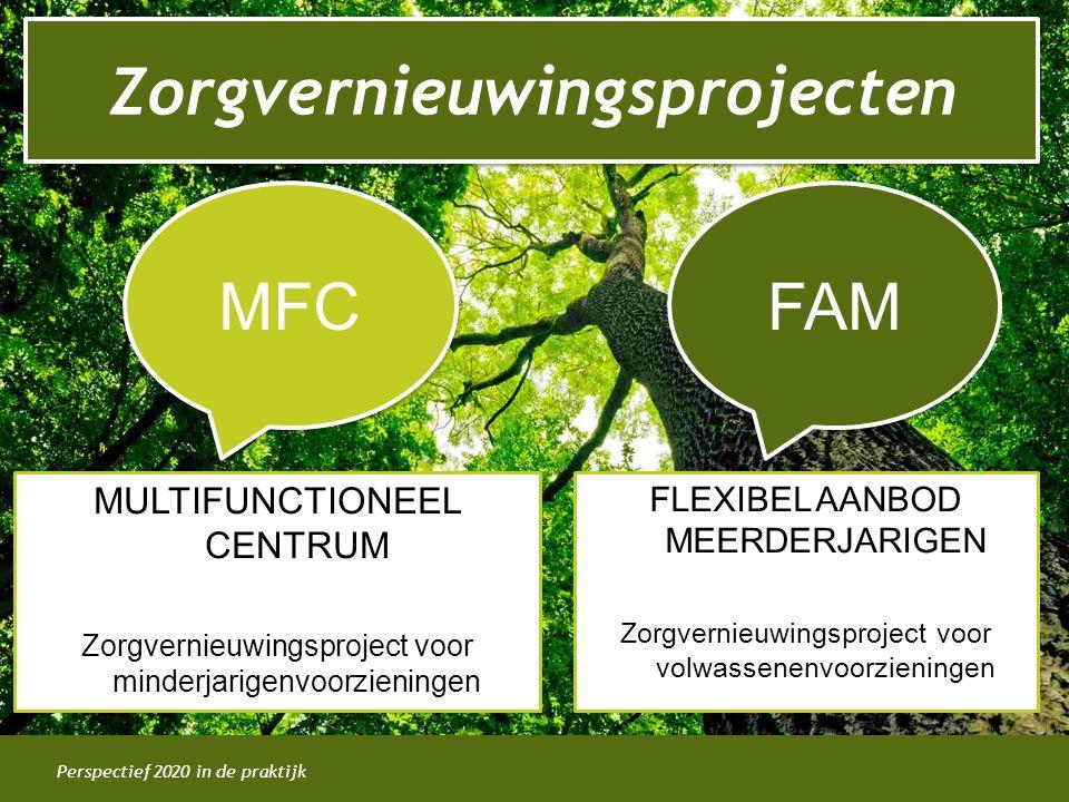 Perspectief 2020 in de praktijk Zorgvernieuwingsprojecten MFC MULTIFUNCTIONEEL CENTRUM Zorgvernieuwingsproject voor minderjarigenvoorzieningen FAM FLE