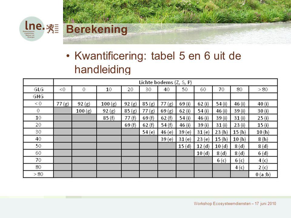 Workshop Ecosysteemdiensten – 17 juni 2010 Berekening Kwantificering: tabel 5 en 6 uit de handleiding