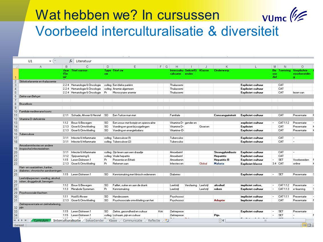 Wat hebben we? In cursussen Voorbeeld interculturalisatie & diversiteit