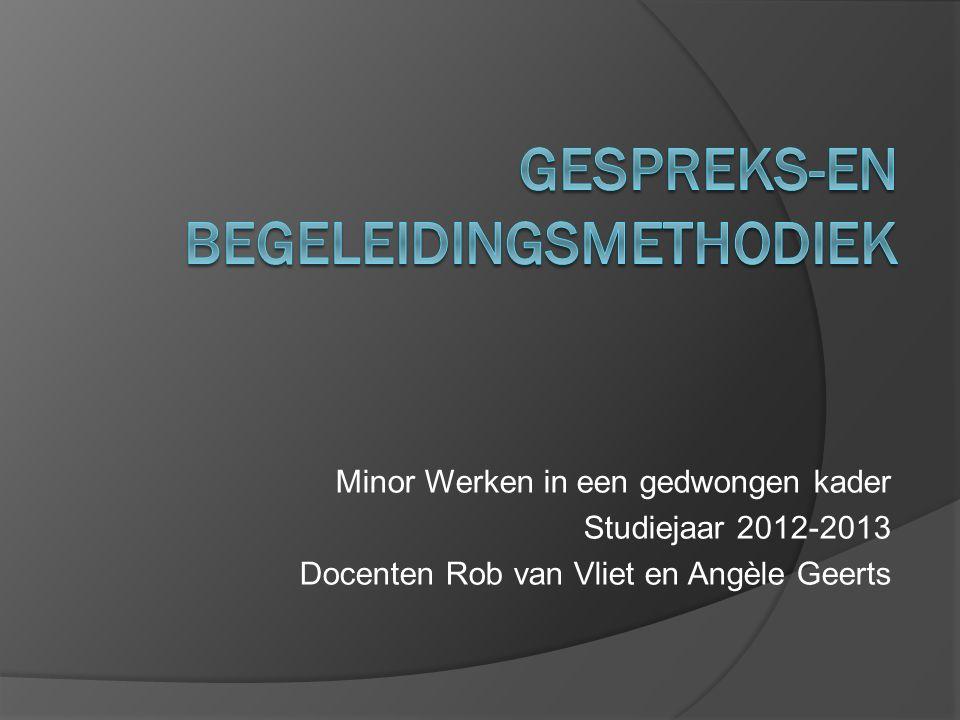 Minor Werken in een gedwongen kader Studiejaar 2012-2013 Docenten Rob van Vliet en Angèle Geerts