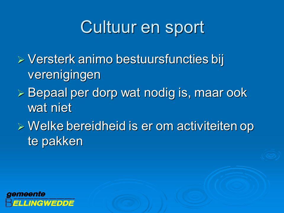 Cultuur en sport  Versterk animo bestuursfuncties bij verenigingen  Bepaal per dorp wat nodig is, maar ook wat niet  Welke bereidheid is er om activiteiten op te pakken