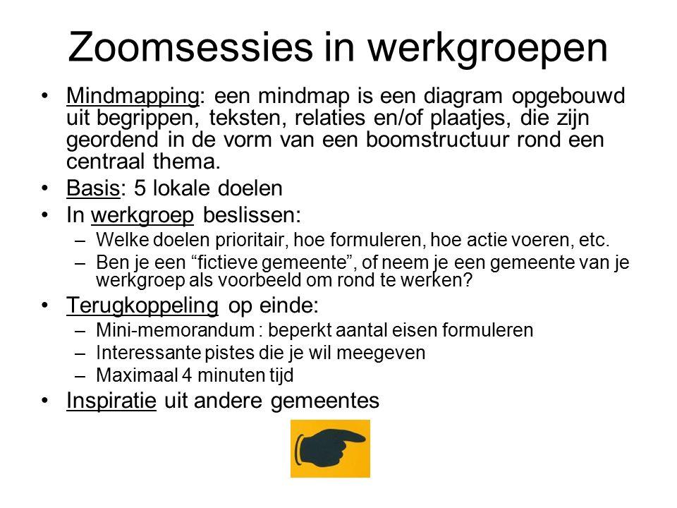 Zoomsessies in werkgroepen Mindmapping: een mindmap is een diagram opgebouwd uit begrippen, teksten, relaties en/of plaatjes, die zijn geordend in de