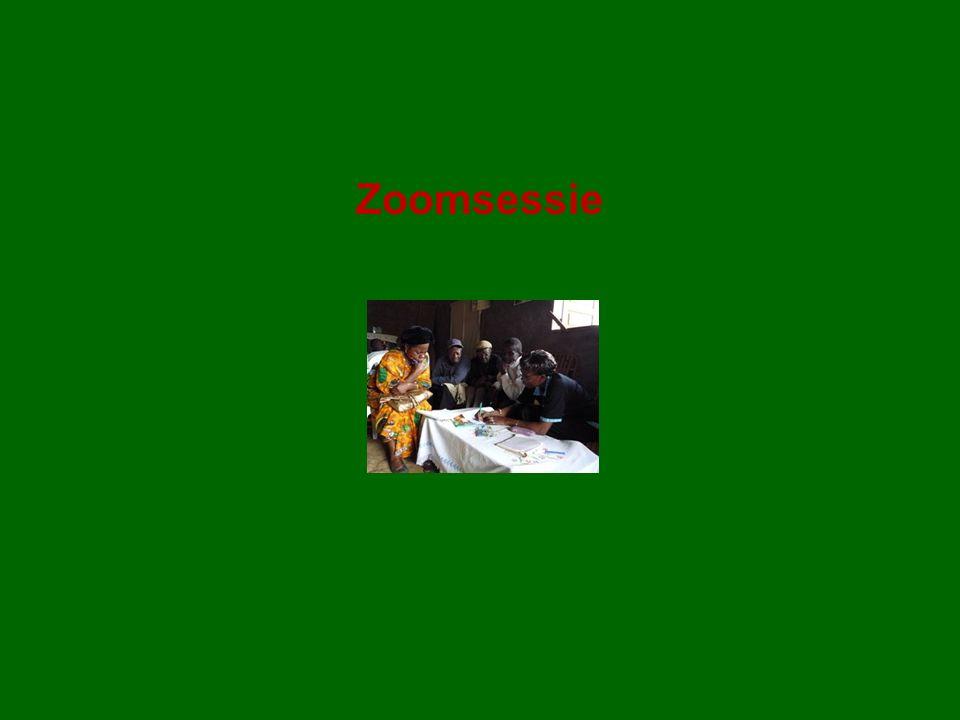 Zoomsessie