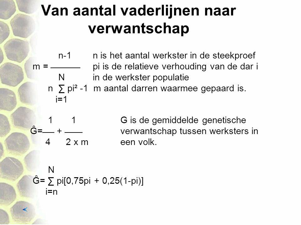 Van aantal vaderlijnen naar verwantschap n-1 n is het aantal werkster in de steekproef m =  pi is de relatieve verhouding van de dar i Nin de werkster populatie n ∑ pi² -1 m aantal darren waarmee gepaard is.
