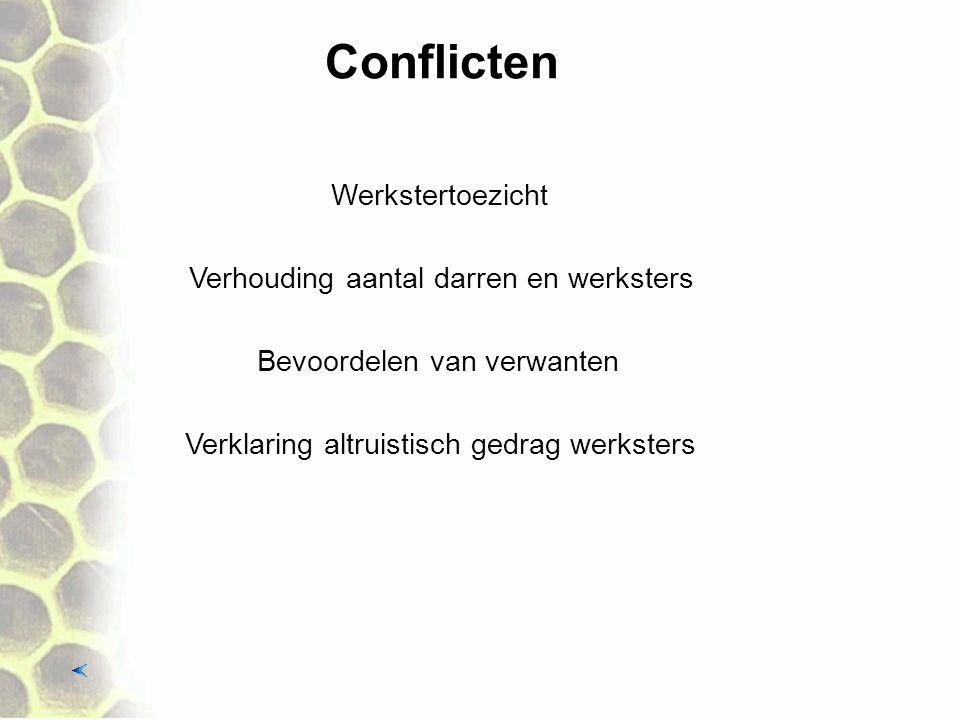 Conflicten Verklaring altruistisch gedrag werksters Werkstertoezicht Verhouding aantal darren en werksters Bevoordelen van verwanten