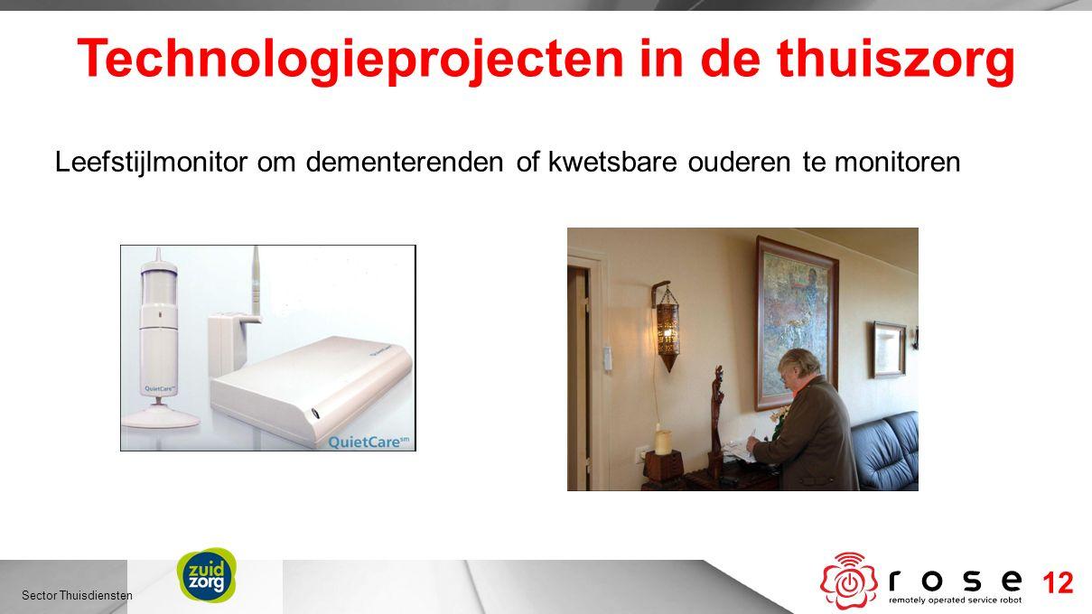 Technologieprojecten in de thuiszorg Leefstijlmonitor om dementerenden of kwetsbare ouderen te monitoren Sector Thuisdiensten 12