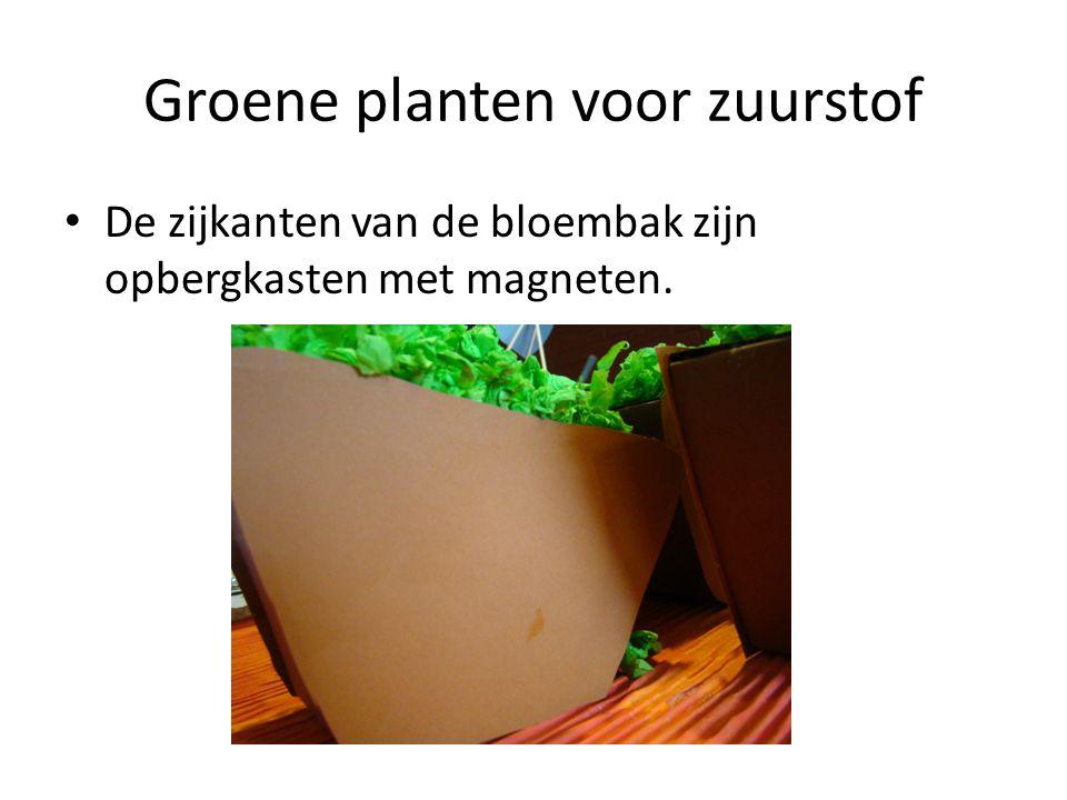 Groene planten voor zuurstof De zijkanten van de bloembak zijn opbergkasten met magneten.